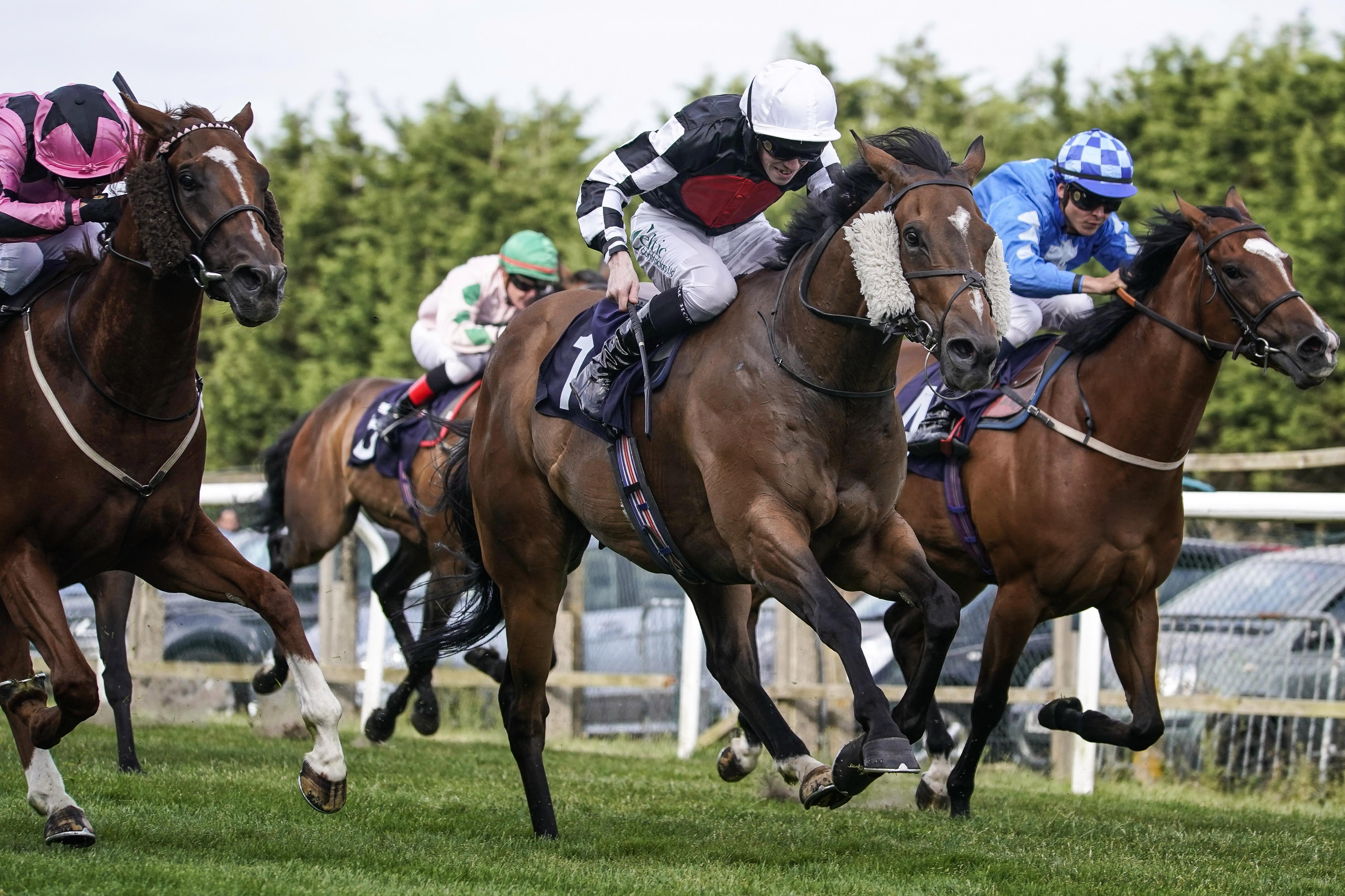 Templegate's horse racing tips: Brighton, Chepstow